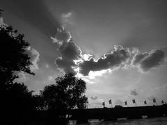 Sunbeam (Franois Tomasi) Tags: blackandwhite noir blanc black white pointdevue pointofview clairage lumire lumires light ombre ombres tours touraine indreetloire villedetours pov nikon google flickr pont soleil sun cloud clouds nb bw