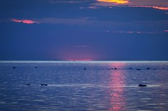Tranquility after sunset (frankmh) Tags: sunset tranquility sea water evening resund outdoor sky yacht