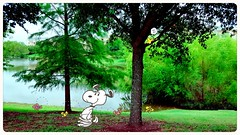 Snoopy At The Lake (kibblesthepig) Tags: snoopy peanuts lake apartments summer