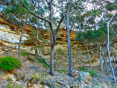 Enclosed (elphweb) Tags: falsehdr fhdr seaside trees forest bush foliage australia rocky rocks outdoor