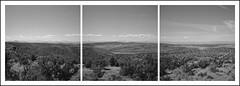Hay Creek Ranch Triptych (ASHLANDJET) Tags: film rolleiflex 35e planar ilford xp2 mediumformat analog 120 triptych haycreekranch centraloregon madras oregon blackandwhite monochrome mountains threesisters mtjefferson mthood vintagecamera tlr panorama rolleiflexpanoramahead landscape