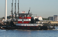 JAMES WILLIAM in New York, USA. August, 2016 (Tom Turner - SeaTeamImages / AirTeamImages) Tags: jameswilliam vessel tug tugboat spot spotting red channel water waterway kvk killvankull pushertug tow towing tomturner statenisland newyork nyc bigapple unitedstates usa marine maritime pony port harbor harbour transport transportation norfolktugcompany