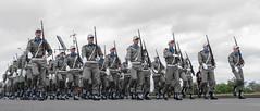 DSC_5273 (neyde zys) Tags: bandadabrigada brigadamilitar desfilefarroupilha gauchos indumentaria prendas tradicao