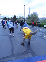 Beech Brook (59) (Moondog Mascot) Tags: 100k moondog cavaliers beechbrook 04222012 fleetfeetsports5k