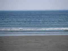 Sky, ocean, sand (b2d16q04)