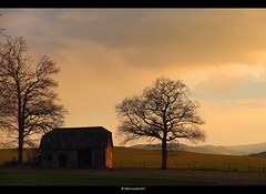 Old barn in evening light (bernd obervossbeck) Tags: trees tree barn evening abend countryside farm land bume baum bauernhof eveninglight sauerland scheune abendlicht mygearandme mygearandmepremium mygearandmebronze mygearandmesilver