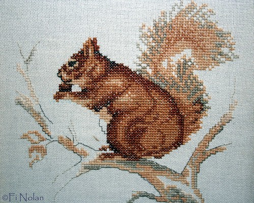Squirrel-Detail