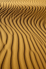 Sandy Abstraction (TARIQ-M) Tags: pictures shadow abstract art texture sahara canon lens landscape photo sand waves pattern desert image photos ripple patterns dunes picture wave images abstraction ripples riyadh saudiarabia hdr       canoneos5d   goldensand            canonef1635mmf28liiusm  canoneos5dmarkii