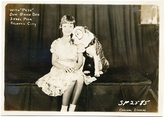 Pete the Pup with Fan (Bettie Page Styled) Tags: old family our pet history dogs vintage movie star early photo little victorian gang picture pic pit bull bulldog pitbull terrier american pete pup brindle breed bully staffordshire petey pitbulls bullies rascals apbt