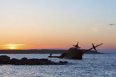 Ahern Trader, Frederickton, Newfoundland (gwhiteway) Tags: ocean travel sea canada tourism nature newfoundland coast rocks ship decay vessel atlantic shipwreck nl wreckage osprey ahern destroy trader frederickton