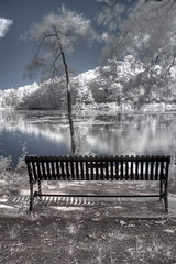IMG_4020_1_2_3_4_760nm_IR - Fawn Lake, Bedford, MA (Syed HJ) Tags: lake canon bench ir ma bedford infrared fawnlake g9 bedfordma lonelybench 760nm canong9 fawnlakebedfordma