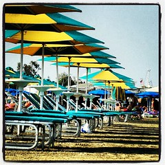 Umbrellas! (steliosgiorgio) Tags: sea beach square sand lofi cyprus squareformat umbrellas larnaca sunbeds foinikoudes   iphoneography instagramapp uploaded:by=instagram