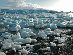 """Bergy bits on an Antarctic beach • <a style=""""font-size:0.8em;"""" href=""""http://www.flickr.com/photos/16564562@N02/7452860730/"""" target=""""_blank"""">View on Flickr</a>"""