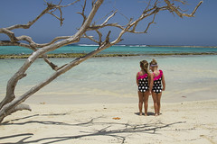 Primas/ Cousins (Lucille Kanzawa) Tags: girls sea tree praia beach mar aruba árvore meninas árvoreseca babybeach driedtree