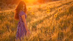Puesta del sol de trigo ([]NEEL[]) Tags: sunset portrait woman girl field sunshine golden wheat flare brunette