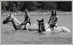 20120703_0975 (<< MZ/X >>) Tags: horse girl eos riding duna magyar danube lovaglás