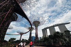 Gardens by the Bay   Marina South, Singapore (Ping Timeout) Tags: gardens garden by bay marina south sands water waterfront giant tree flower dome cloud forest 29 june 2012 opening view waterfall conservation conservatory singapore attraction new landmark city cityscape cbd park public green house sky light super trees grove plant flora canopy skywalk vertical cool moist humid mountain  reservoir supertree mbs ocbc barrage dragonfly lake lights bank sight