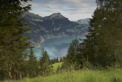 from eggberge (The Cassandra Project) Tags: lake mountains alps water digital landscape schweiz switzerland see wasser suiza swiss berge svizzera landschaft vierwaldstttersee uri altdorf gebirge sveitsi flelen voralpen kantonuri eggberge d3s lakelucernce