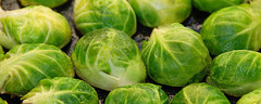 brussels sprouts (Chris Yarzab) Tags: food vegetables dinner lunch healthy cut good harvest cook eat chef meal greens heat chopped hungry portion diet brusselssprouts prepare ramsey delcious chrisyarzab