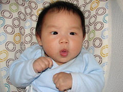 "2-month-old • <a style=""font-size:0.8em;"" href=""http://www.flickr.com/photos/22330476@N02/7625128802/"" target=""_blank"">View on Flickr</a>"
