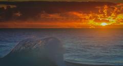 Froggys beach sunrise (rod marshall) Tags: sunrise snapperrocks bestsunrise sunrisesnapperrocksbestsunrise