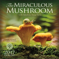2017 Miraculous Mushroom Wall Calendar (marianna_a.) Tags: mushroom beautiful photography design yummy graphic bright miraculous 2017 wallcalendar amberlotuspublishing mariannaarmata