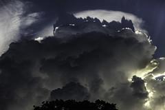 Sky Series - Coral Gables | 160822-0166-jikatu (jikatu) Tags: atmosfera atmosphere cielo clouds hat jikatu miami nubes sigma sky sombrero