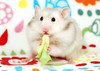 Just Bubu (pyza*) Tags: hamster hammie chomik syrianhamster syrian furry fluffy critter rodent animal pet monster cute adorable