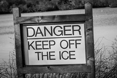 Danger, Keep off the Ice (LauraJSwindle) Tags: nikond7100 longisland 85mm nature botanical foliage flora signs danger monochrome blackandwhite wantagh ny usa belmontstatepark statepark nystatepark waterscapes warningsigns weeds belmont newyork