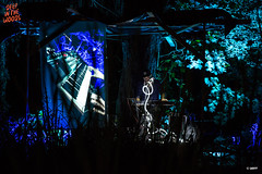 20160903_DITW_00106_WTRMRK (ditwfestival) Tags: ditw16 deepinthewoods massembre
