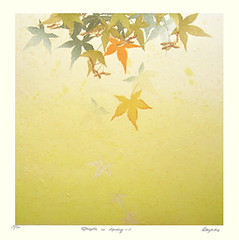 Japanese maple (Japanese Flower and Bird Art) Tags: flower maple acer palmatum aceraceae kayoko miyayama modern woodblock print japan japanese art readercollection
