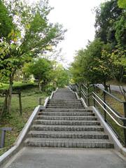IMG_5097 (jaglazier) Tags: 2016 9916 copyright2016jamesaglazierandjamesaferguson dazaifu deciduoustrees japan kyushu september stairs trees staircases stairways