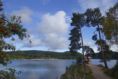 _DSC5544 (chicour) Tags: sony rx100 rx100m2 rx100ii allemagne germany t summer 2016 schluchsee