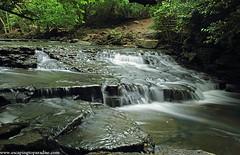 IndianRun-1_4910web (nickp_63) Tags: indian run dublin ohio falls waterfall cascade rapids river long exposure nature outdoor rocky