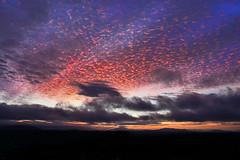 Under a Mackerel Sky (Darrell Wyatt) Tags: sunrise dawn sky clouds portland oregon mounthood