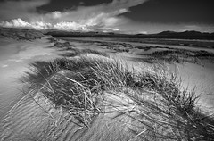 'Ammophila' - Newborough Beach, Anglesey (Kristofer Williams) Tags: blackandwhite bw beach monochrome grass wales clouds landscape coast blackwhite dunes coastal anglesey marram newborough ammophila