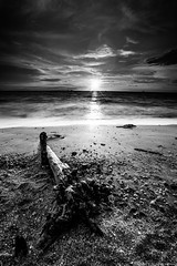 Remis Beach (MOG'S) Tags: sunset blackandwhite bw seascape beach log long exposure ray sundown branches shell shore malaysia jeram kualaselangor mogs remis sasaran malaysialandscape pantairemis donniet pantaijeram remisbeach landscapemalaysia donnietan malaysialandscapespot