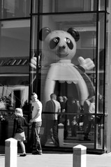 (Steini789) Tags: bw man reflection castle window glass girl strange weird blackwhite creepy bouncy lookingback overtheshoulder inflated