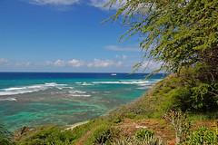 Shades of Blue & Green (jcc55883) Tags: ocean blue brown green hawaii nikon oahu pacificocean yabbadabbadoo d40 kaalawaibeach nikond40 diamondheadroad kuileicliffs