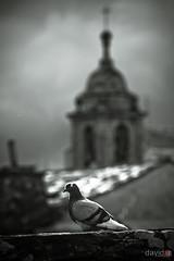 Paseo por las nubes (David A.R.) Tags: david canon de grupo kdd lugo oficial castillo visita vigo fotografo araujo fotografos peneda kdda pambre a 40d canoneos40d kdd´s davidar 41ª