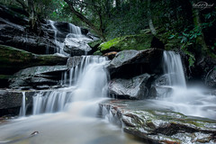 Lower Somersby Falls (Bruce_Hood) Tags: longexposure tree forest river waterfall moss nikon rainforest rocks stream australia nsw newsouthwales wate somersby