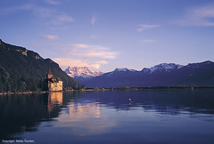 Castle Chillon-Day 5 (turtleexpedition) Tags: lake heidi switzerland swisscheese luzern pilatus davos gornergrat zermatt matterhorn grindelwald lauterbrunnen lucerne jungfraujoch interlaken engadin vierwaldstättersee thunersee appenzell gruyere lakegeneva ballenberg stmoritz maienfeld gotthard alphorn mürren heidiland genfersee lakethun steamships chateauchillon stgotthard muerren castlechillon schlosschillon traintojungfraujoch monikawescott garywescott theturtleexpedition monikamühlebachwescott theturtleexpeditionunltd rvinginswitzerland rvingineurope rvrentalineurope rvrentalingermany campinginswitzerland steamshipsinswitzerland antiquesteamships