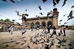 Mecca Masjid - Hyderabad (dsaravanane) Tags: sky india birds temple nikon dove muslim wide bluesky mosque tokina hyderabad andhra mecca masjid charminar d90 andrapradesh saravanan meccamasjid dovebirds meccamasjidhyderabad tokina1116mm dsaravanane 2012best saravanandhandapani