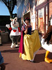 Snow White and the White Rabbit (disneylori) Tags: mainstreet disney disneyworld characters wdw waltdisneyworld snowwhite magickingdom townsquare aliceinwonderland whiterabbit mainstreetusa snowwhiteandthesevendwarfs disneycharacters facecharacters nonfacecharacters snowwhitecharacters aliceinwonderlandcharacters