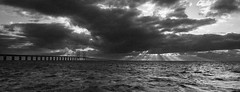 S (Michell Andersson) Tags: bridge sea bw cloud sun monochrome clouds grainy resundsbron resundsbridge canonefs1855mmf3556isii canoneos600d