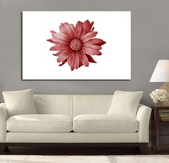 Petal Madness Red (Simply Canvas Art) Tags: art wallart flowerart homedecoration flowerprints flowercanvas flowerwallart flowercanvasprints flowercanvasart flowercanvaswallart