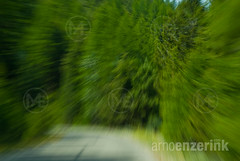 Drunken driving on an empty road through the forest (Arno Enzerink) Tags: road street trees motion blur color tree green nature colors car yellow horizontal drunk danger corner way landscape concrete photography drive unsafe dangerous driving traffic distorted zoom side under vivid blurred line safety vision responsibility alcohol drugs drug drunkenness violence drunken driver intoxicated safe shoulders lush visible middle curve shoulder panning violation orientation prohibited visibility paved sides influence unclear irresponsible designated unable uncontrolled inability
