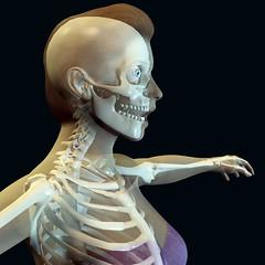 Transparency (JuliSonne) Tags: illustration poser clipart transparent frau rendering profil hals durchsichtig kopf anatomie skelett knochen brust gerippe schaedel brustkorb schwarzerhintergrund wirbelsaeule oberkoerper gelenke anschauungsmaterial halswirbelsaeule wirbelknochen halbsichtbar