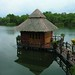 Floating room at Ban Ton Ruk, Takua Pa, Southern Thailand