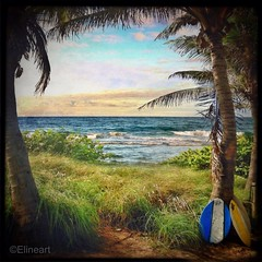 30:365 Summer Joy (elineart) Tags: cameraphone blue trees sea summer sky beach photography surf florida joy palm surfboard 365 apps group3 iphone odc superimpose project365 365days i365 iphone4 iwatermark elineart elineartphotography iphone365 iphoneography ourdailychallenge snapseed